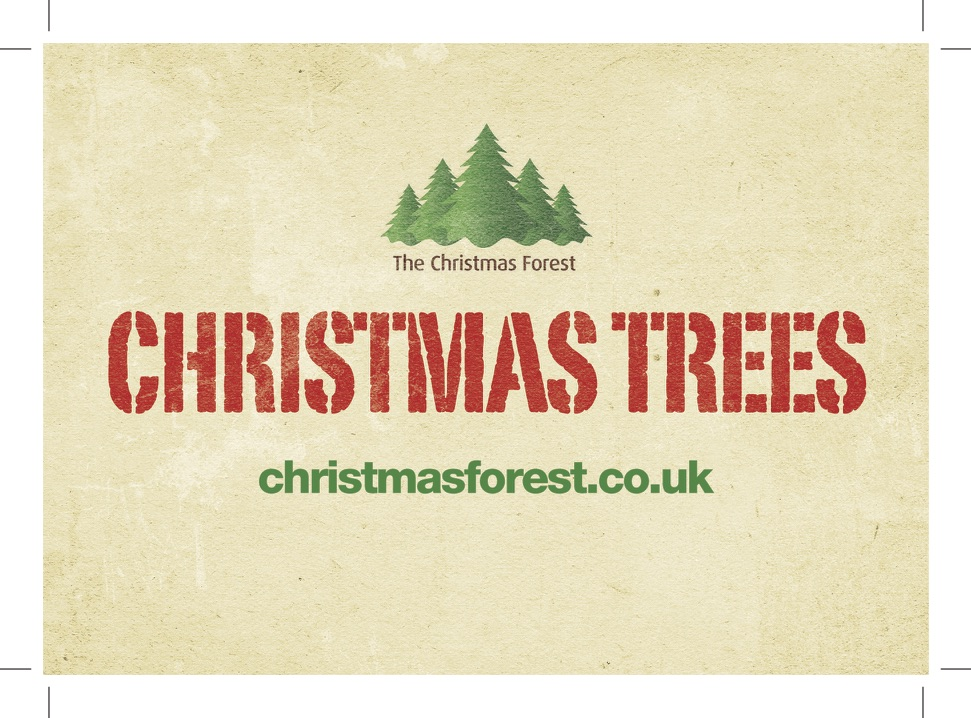 The Christmas Forest
